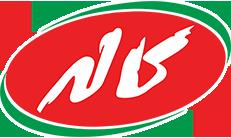 logo fa طراحی سایت ارزان،سریع و حرفه ای با قیمت مناسب